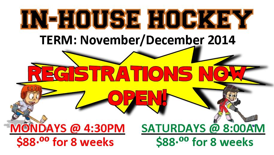 In-House-Hockey-Slide-pic-2